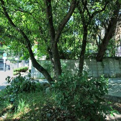 Частный сектор в Ялте со своим двориком и мангалом
