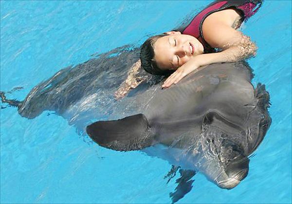 Айвазовское Дельфинарий