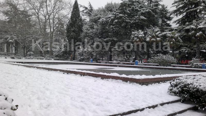 Зима в Ялте - бассейн