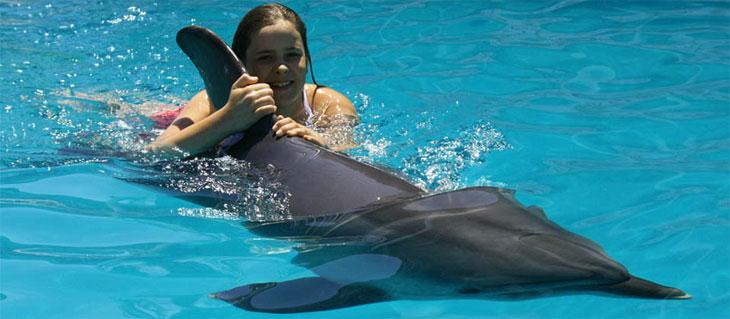 Дельфинотерапия лечит детей