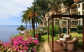 Кресла под пальмами у моря в частном секторе Ялты